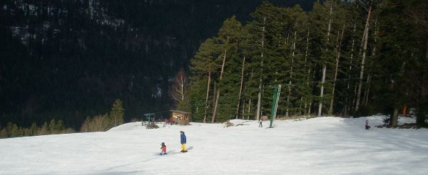Lower slopes of the ski piste