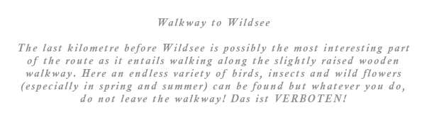 The last kilometer before Wildsee is possibly the most interesting part of the route as it entails walking along the slightly raised wooden walkway. Here an endless variety of birds, insects and wild flowers (in spring and summer) can be found but whatever you do, do not leave the walkway! Das ist VERBOTEN!